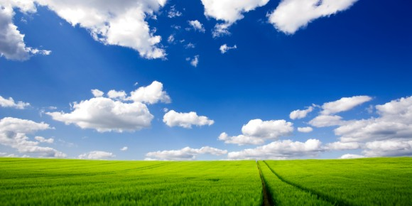 Green-Field-HD-Wallpaper